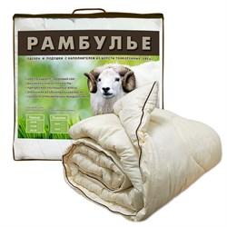 Одеяло 2.0 Рамбулье 172*205